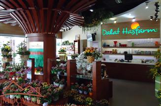 Nội Thất Showroom Hoa Tươi Đà Lạt
